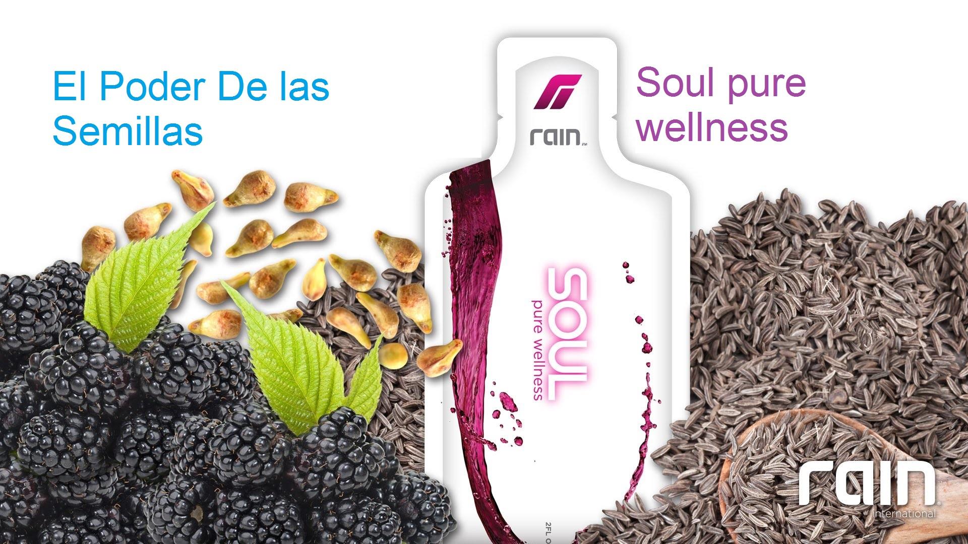 Rain Soul España